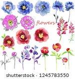 set watercolor elements of pink ... | Shutterstock . vector #1245783550