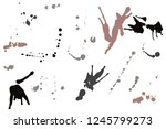 hand drawn set of sepia colored ... | Shutterstock .eps vector #1245799273