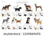 hunting dogs collection... | Shutterstock .eps vector #1245869653