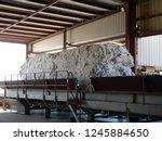 buckeye  az.  u.s.a. nov. 6 ...   Shutterstock . vector #1245884650