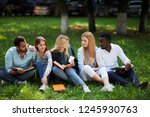 multiracial young friends...   Shutterstock . vector #1245930763