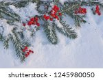red berries with christmas tree ... | Shutterstock . vector #1245980050