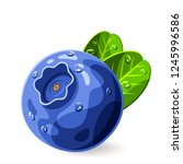 blueberry with drops of water... | Shutterstock .eps vector #1245996586