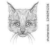 beautiful graphic cat   Shutterstock . vector #1246091236