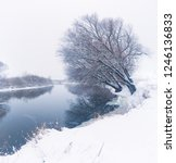 panoramic photo of a winter... | Shutterstock . vector #1246136833