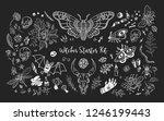 starter witch kit. magic... | Shutterstock .eps vector #1246199443