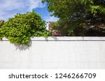White Wall With Green Leaves...