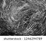 black web on white background.... | Shutterstock . vector #1246294789