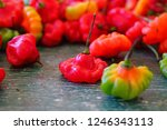 view of red and green scotch... | Shutterstock . vector #1246343113