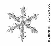 snowflake isolated on white... | Shutterstock .eps vector #1246378030
