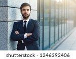 portrait of young businessman... | Shutterstock . vector #1246392406