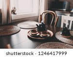 rustic kitchen in brown and... | Shutterstock . vector #1246417999