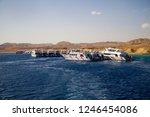 sharm el sheikh. egypt....   Shutterstock . vector #1246454086