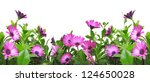 border with violet african... | Shutterstock . vector #124650028