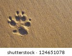 Dogs Single Paw Print On The...