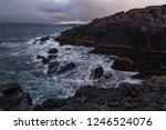 rocky coast ocean wave rage.... | Shutterstock . vector #1246524076