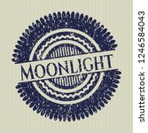 blue moonlight distressed... | Shutterstock .eps vector #1246584043