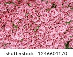 Stock photo background of pink roses with blurred corners 1246604170