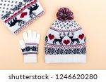 gloves and worm woolen hat....   Shutterstock . vector #1246620280