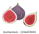 fresh ripe delicious juicy figs ... | Shutterstock .eps vector #1246653043