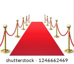 red carpet. event celebrity... | Shutterstock .eps vector #1246662469