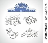 blueberry collection of fresh... | Shutterstock .eps vector #1246684276