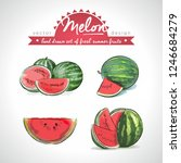 melon. hand drawn collection of ... | Shutterstock .eps vector #1246684279