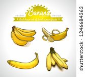banana. hand drawn collection... | Shutterstock .eps vector #1246684363