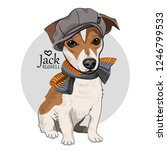 vector dog with grey hat and... | Shutterstock .eps vector #1246799533