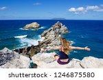 point des colibris  castle... | Shutterstock . vector #1246875580