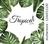 tropical vector design border... | Shutterstock .eps vector #1246911130