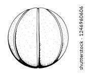 basketball vector illustration.   Shutterstock .eps vector #1246960606
