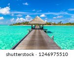 water villas  bungalows  and... | Shutterstock . vector #1246975510