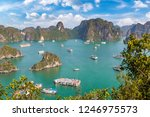 panoramic aerial view of halong ... | Shutterstock . vector #1246975573