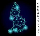 glossy polygonal mesh map of... | Shutterstock .eps vector #1246999210
