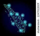 glossy polygonal mesh map of... | Shutterstock . vector #1247012029