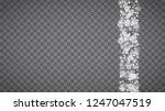 blizzard snowflakes on... | Shutterstock .eps vector #1247047519