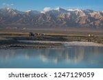 panoramic scenery of salt lakes ... | Shutterstock . vector #1247129059