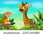 nature scene with a tiger... | Shutterstock .eps vector #1247145580