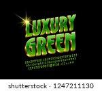 vector luxury green and golden... | Shutterstock .eps vector #1247211130