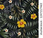 night tropical jungle seamless... | Shutterstock .eps vector #1247217463
