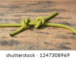 a climbing dynamic rope showing ... | Shutterstock . vector #1247308969
