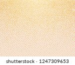 vector golden luxury glitter... | Shutterstock .eps vector #1247309653