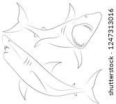 black line shark attacks on... | Shutterstock .eps vector #1247313016