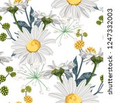 vector floral seamless pattern... | Shutterstock .eps vector #1247332003