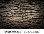 Bark Texture Background Patter...