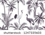 tropical vintage botanical... | Shutterstock .eps vector #1247335603