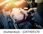Coolant Car Engine Detail  ...