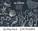 underwater world hand drawn... | Shutterstock .eps vector #1247411893