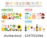 main food groups  ... | Shutterstock .eps vector #1247521066
